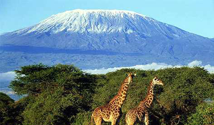 Vuriva-Safaris-Kilimanjaro-National-Park-Mountain